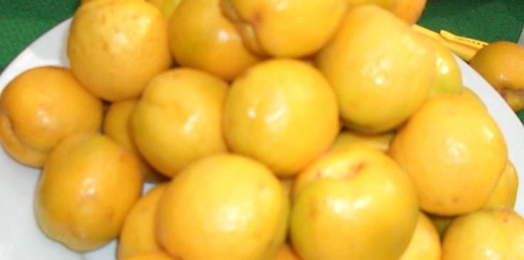 敦煌的主要瓜果特产还有紫阳桃