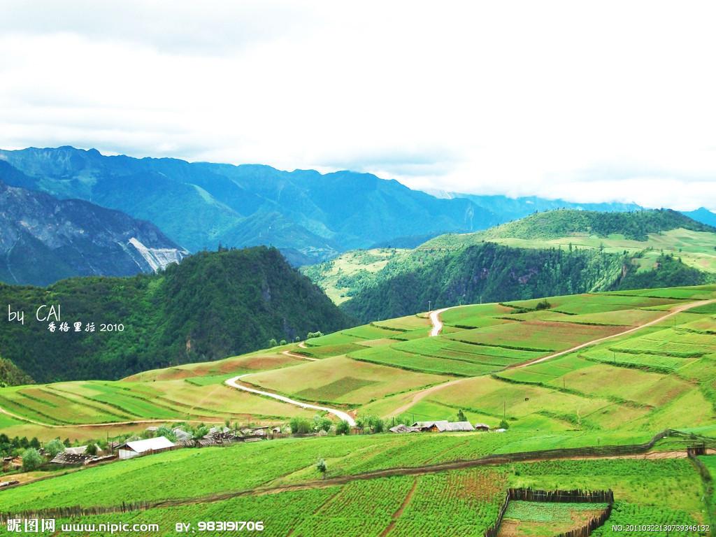 整个云南西北高,东南低,有84%多的面积是山地,高原,丘陵占10%,仅有不